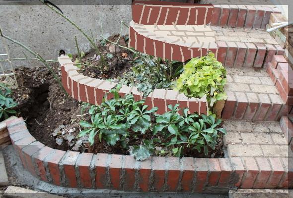 DIY 庭づくり 擁壁下 階段下 壁際 土留 花壇 20150126