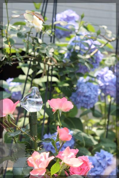 20150617 支柱 ガラスの小鳥