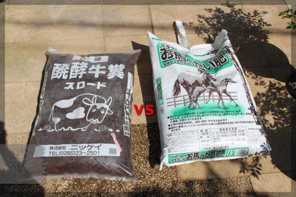 馬糞と牛糞 実験 20150427