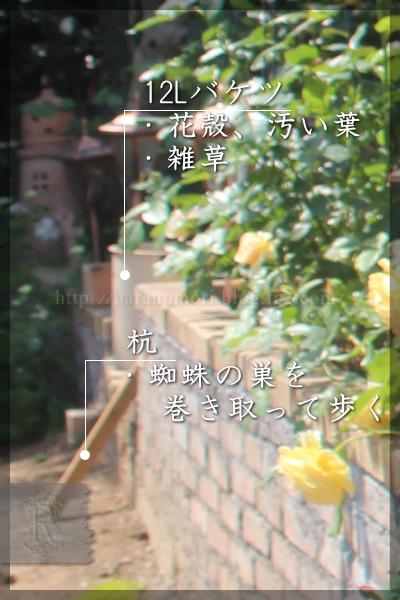 パパ花壇 東 20150515