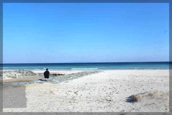 伊豆旅行 20150211_13 白浜