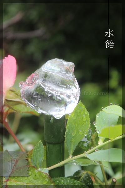 ガラスの小鳥 支柱 20150619