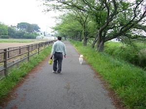 道の駅庄和13
