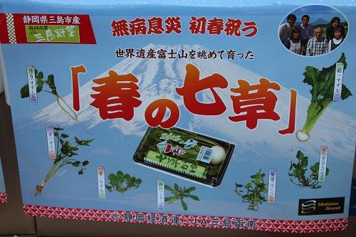 IMG_0793 春の七草・三島