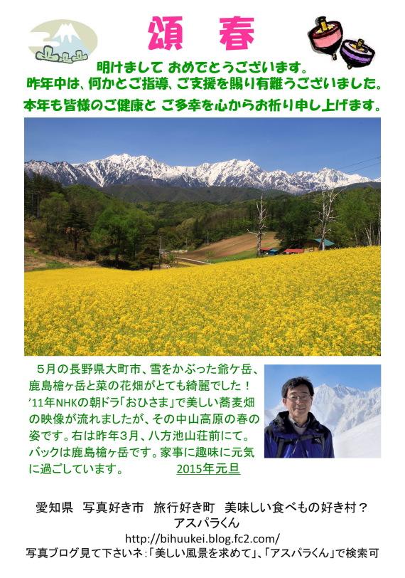 15年賀_菜の花3ブログ用ss1