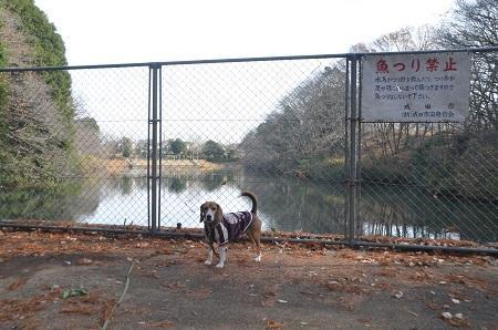 20141224赤坂公園08
