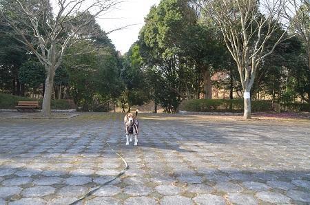 20141224赤坂公園23