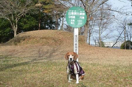 20141224赤坂公園28