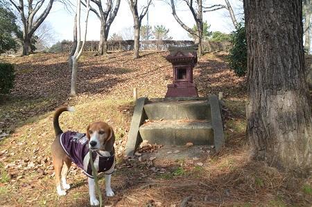 20141224赤坂公園26