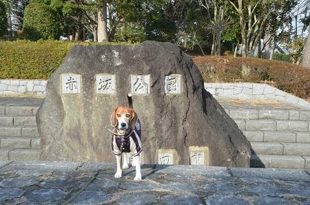 20141224赤坂公園25