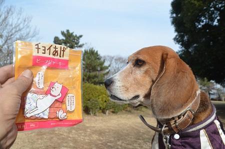 20141224赤坂公園30