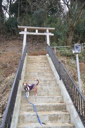 20141224三峯山砦跡02
