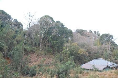 20141224三峯山砦跡10
