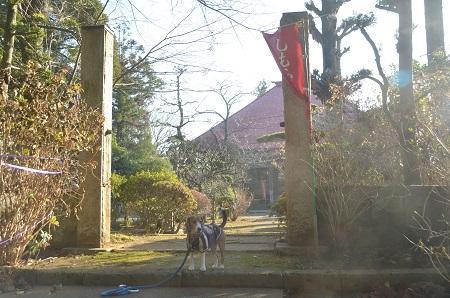 20141224しもふさ七福神乗願寺05