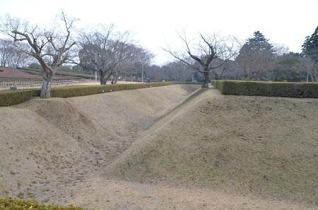 20141228佐倉城址公園17