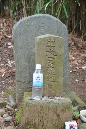 20141228佐倉城址公園13