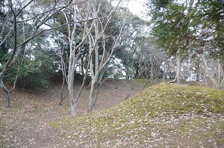 20141228佐倉城址公園24