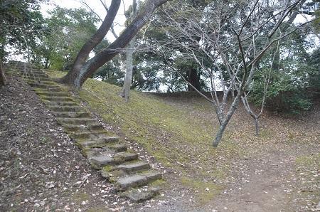 20141228佐倉城址公園23