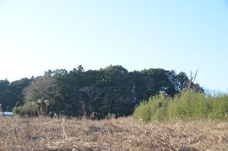 20141231船戸城址23