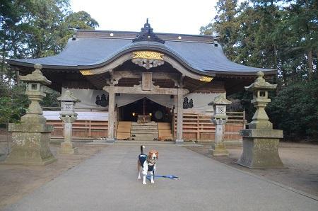 20150101浜の七福神 五所神社06