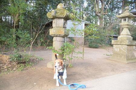 20150101浜の七福神 五所神社11