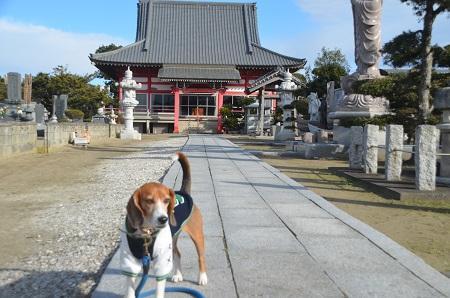 20150101浜の七福神 要行寺06