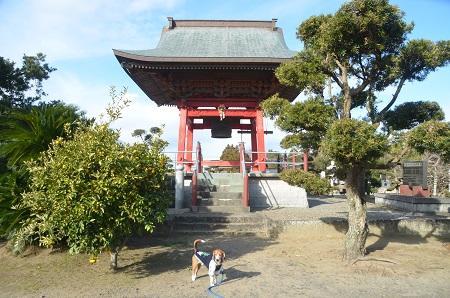 20150101浜の七福神 要行寺05