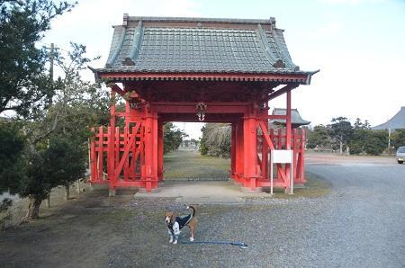 20150101浜の七福神 要行寺02