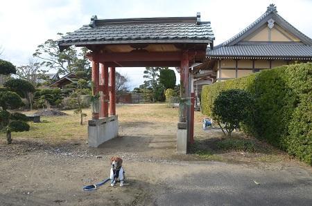 20150101浜の七福神 清泰寺10