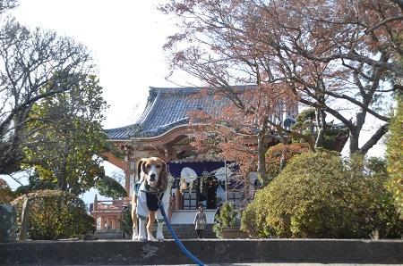 20150101浜の七福神 観明寺15