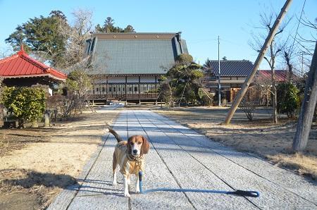 20150108円通寺11