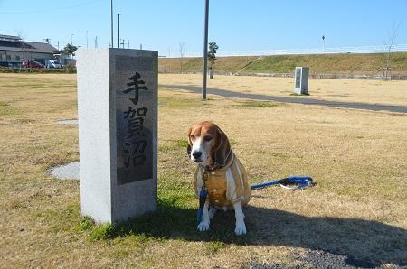 20150108 下総利根宝船公園10