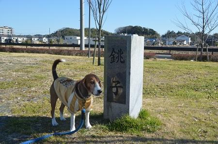 20150108 下総利根宝船公園22