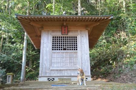 20150108 西大須賀城址14