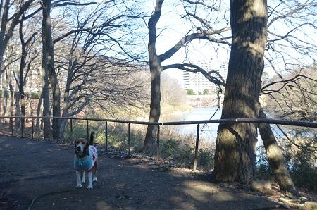 20150122南山公園17