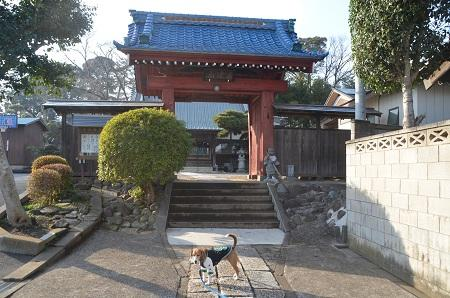 20150127八千代八福神 観音寺03