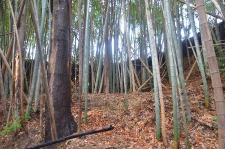 20150127八千代八福神 貞福寺14