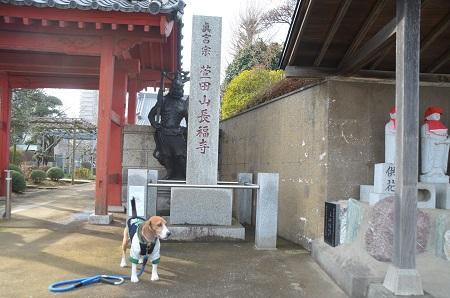 20150127八千代八福神 長福寺(寿老人)01
