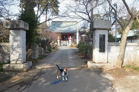20150127八千代八福神 正覚院01