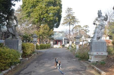 20150127八千代八福神 正覚院14
