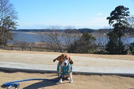 20150131高野山桃山公園05