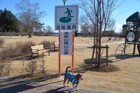 20150131高野山桃山公園01