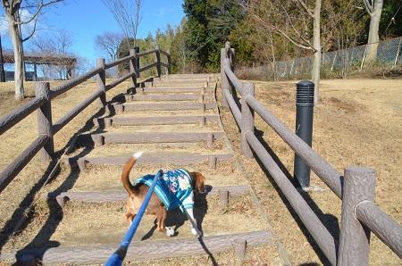 20150131高野山桃山公園22