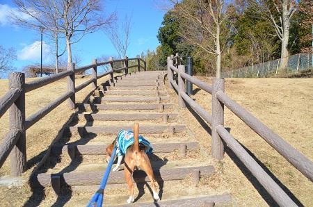20150131高野山桃山公園21