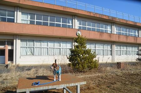 20150211行方小学校10