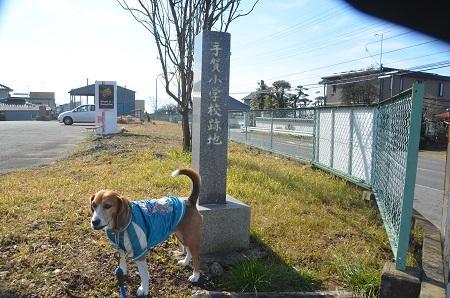 20150211旧・手賀小学校跡02