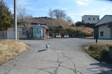 20150211旧・手賀小学校跡07