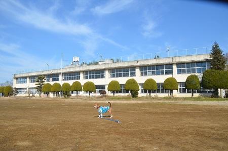 20150211手賀小学校18