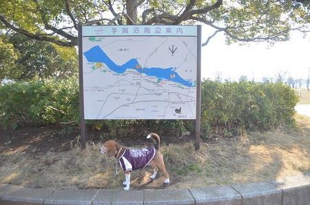 20150212手賀沼公園04