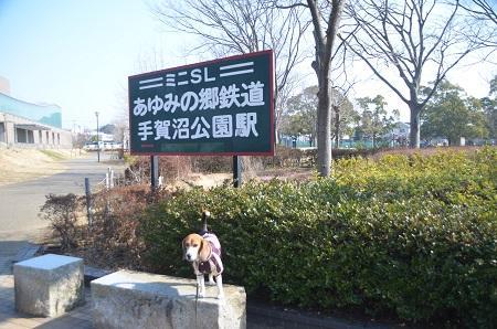 20150212手賀沼公園02